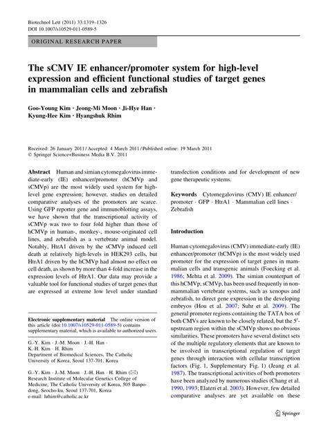(PDF) The sCMV IE enhancer/promoter system for high-level
