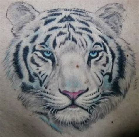 queenstown tattoo white tiger the best tats of pussy cats tigers tiger tattoo and