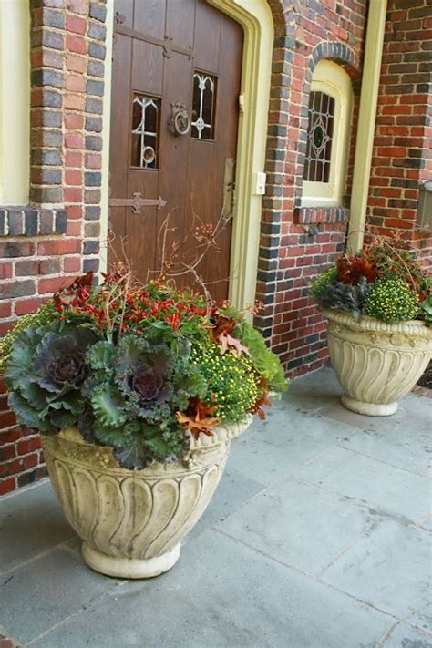 images of 6 flowers in pots 273 best images about outdoors on fall containers railings and play structures