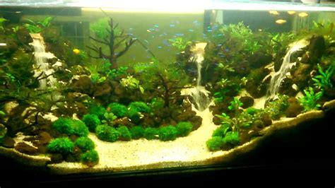 cara membuat aquascape tanpa tanaman aquarium hijau youtube