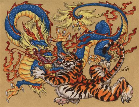 dragon and tiger tattoo designs tiger and tattoos