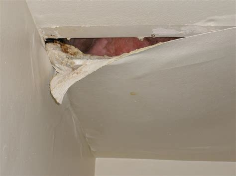 leaking roof   spot  dangers  tips