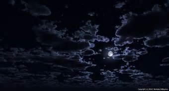 Turtle Night Light Nick Pellegrino