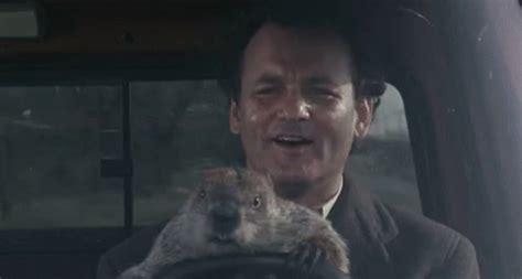 groundhog day reddit groundhog groundhogday gif groundhog groundhogday murray