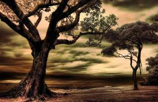 Lighting Facts 100 Outstanding And Inspirational Infrared Photos