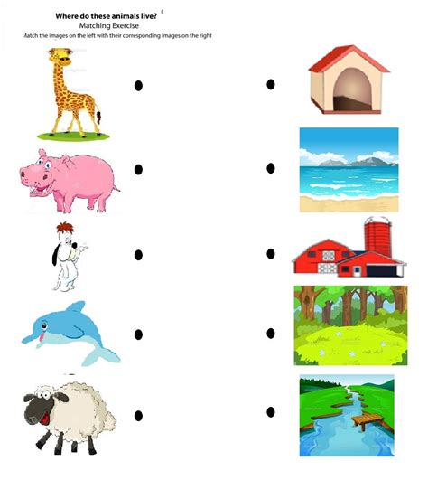 printable animal homes worksheet animal homes worksheets grass fedjp worksheet