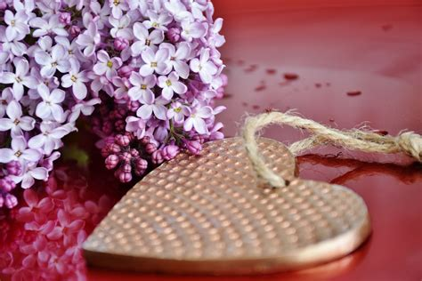things you can do for valentines day 3 things you can do for your husband this valentine s day