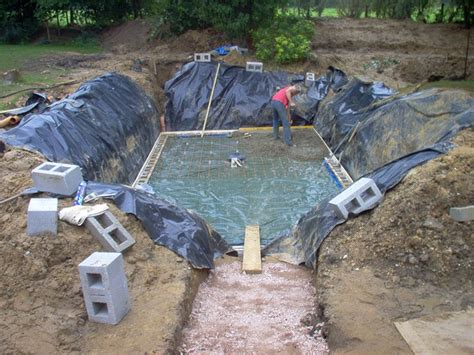 Backyard Blues Pool Service Backyard Pools And Construction 28 Images Swan Pools