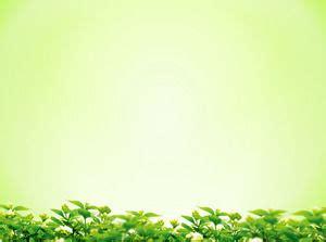 background hijau daun  background check