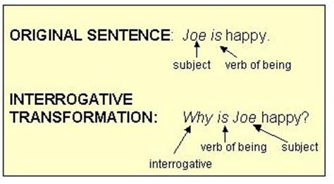 sentence pattern transformation exle action verb with auxiliary verb