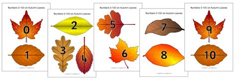 printable leaves with numbers fall printables fall fun