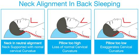 Proper Alignment Neck Pillow by Choosing A Pillow To Relieve Neck And Stiffness