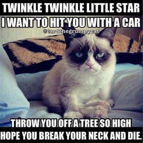 Internet Cat Meme - internet memes images memes wallpaper and background