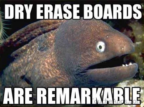 Dry Humor Memes - 84 best bad joke eeeeeeeeeel images on pinterest ha ha