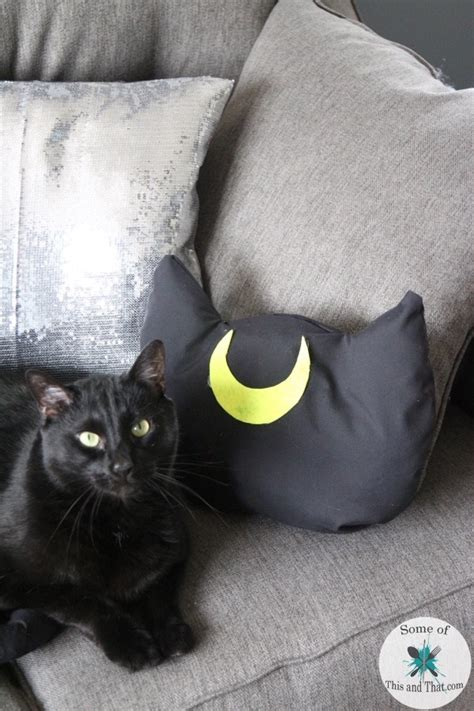 Cat Pillow by Diy Pillow Diy Cat Pillows Some Of This And That