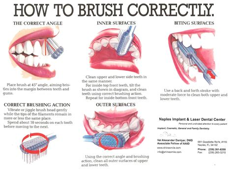 How To Your by The Correct Way To Brush Your Teeth How To Brush Your