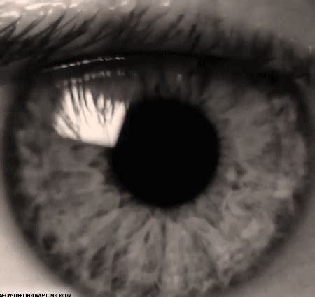 St Eye White Tosca black and white eye gif find on giphy