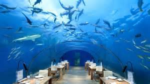 Coral Home Decor the world s largest underwater restaurant is almost ready
