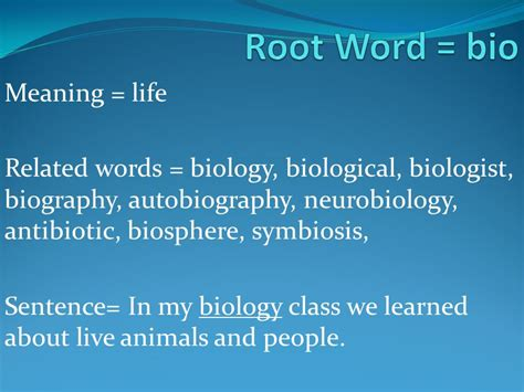 meaning of biography and autobiography 20 common root words ppt video online download