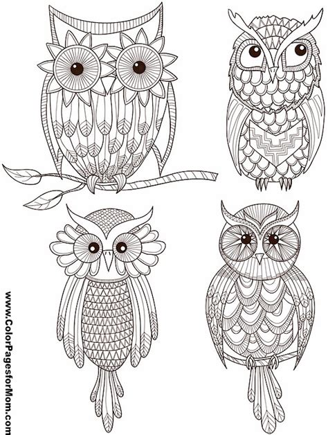 coloring pages mandala owl adult coloring pages owl mandala coloring pages