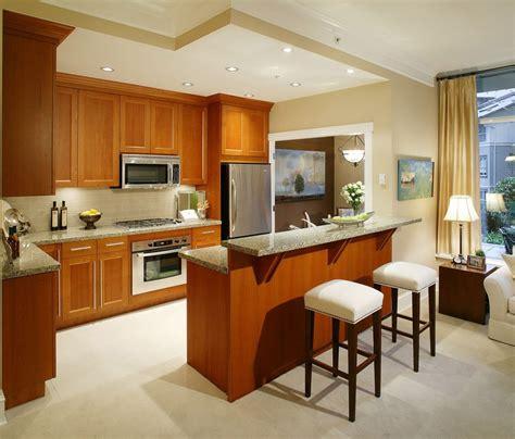 bright kitchen cabinets wood kitchen cabinet decobizz com