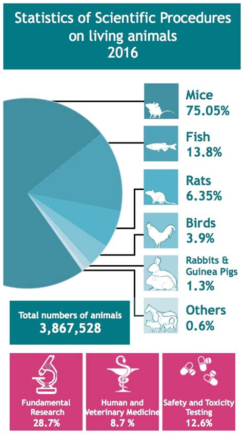 animal testing statistics numbers may have gone down but animal research remains vital