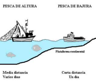 Pesca De Bajura Que Significa el de los pitualandalus tema 11 conocimiento medio la pesca