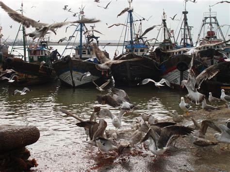 citta e porto marocco porto peschereccio agadir viaggi vacanze e turismo