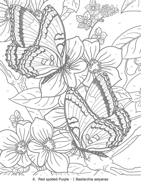 color by number butterfly coloring pages welcome to dover publications