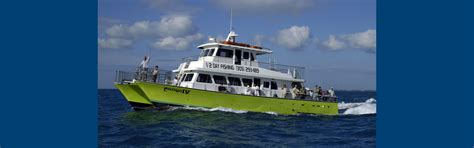 party boat fishing key west florida party boat fishing key west florida keys money saving