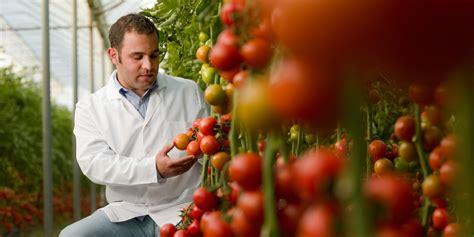 genetic avoid genetically engineered foods by jeffrey m smith fairfield ia avoid genetically engineered foods huffpost