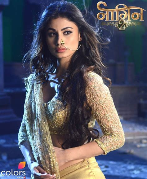 nagin seril naagin season 2 upcoming colors tv serial wiki story
