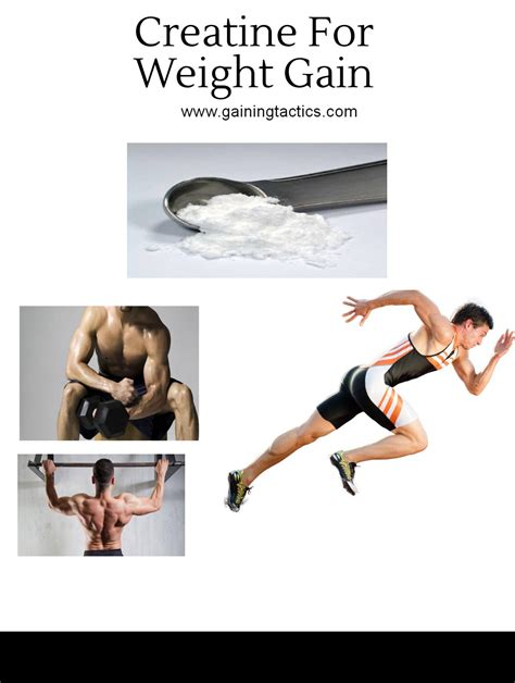 creatine make you gain weight creatine for weight gain how to use it for maximum gains