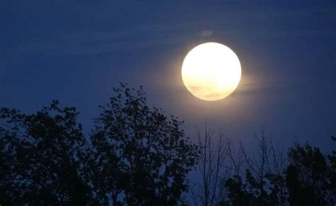 moon what s in a name photograph by barbara griffin moon names and what they treehugger