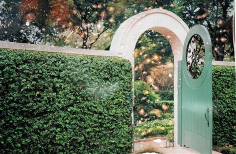 The Door In The Hedge by Blue Door Fairytale Fence Green Hedge Image 102293