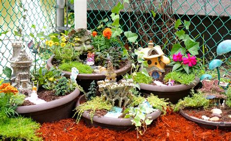 Succulent House by How To Make A Diy Fairy Garden Youtube