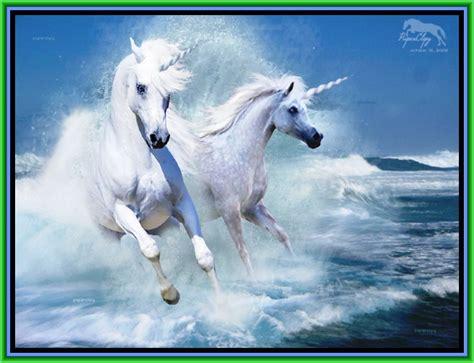 imagenes en movimiento de unicornios unicornios dioses h 201 roes mitos y leyendas