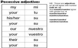 possessive adjectives my your his her etc year 7