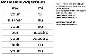 possessive adjectives year 7 spanish