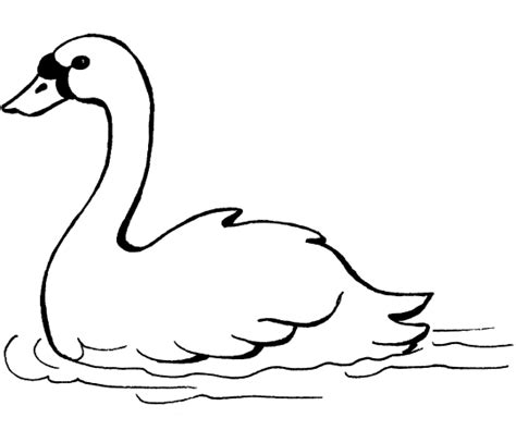 coloring page swan free printable downloads from choretell