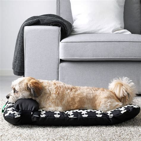 ikea dogs ikea launches pet collection so cats and dogs can feel
