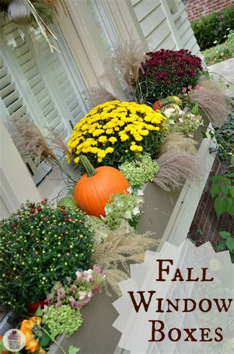 decorating window boxes for fall fall porch decorating ideas tauni co