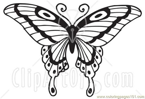 coloring page of painted lady butterfly free coloring pages of painted lady butterfly