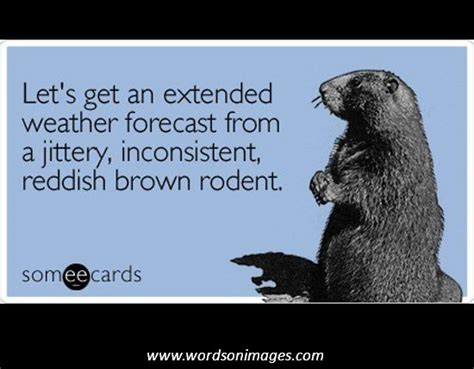 groundhog day phrase inspirational quotes with images of groundhog quotesgram