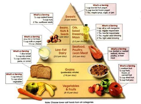 best nutritional diet dash diet food pyramid protein food dash diet
