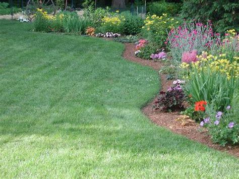 Fertilizing Flower Garden Plants Center For Agriculture Flower Plants For Garden