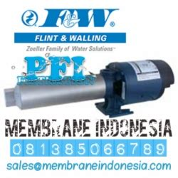 Seal Booster Ro f w pb1023z101 flint walling ro booster 1 hp indonesia
