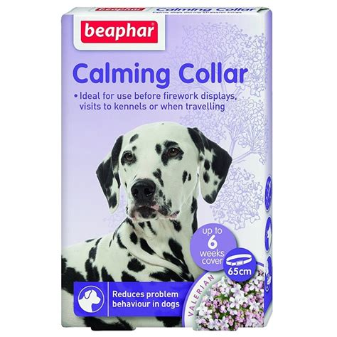 calming collar for dogs beaphar calming collar for dogs huggle pets