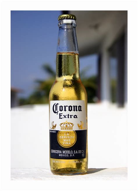 corona light alcohol content daily life in mexico expatially mexico page 5