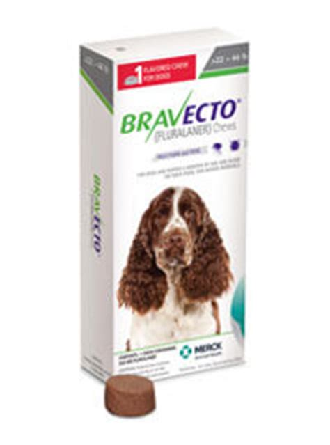 Bravecto Flea Pill For Cats - bravecto 174 fluralaner the only 12 week flea tick